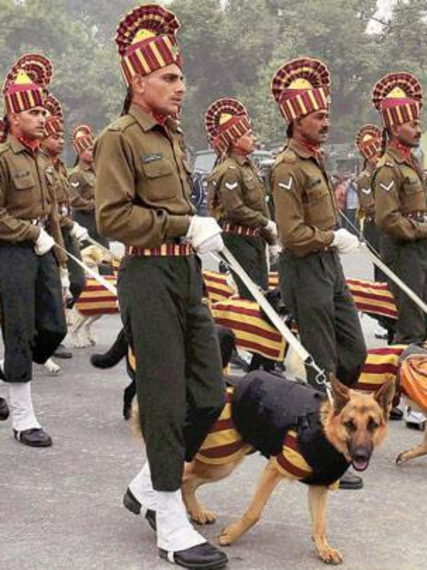 Your Chance To Touch A Military Dog's Life