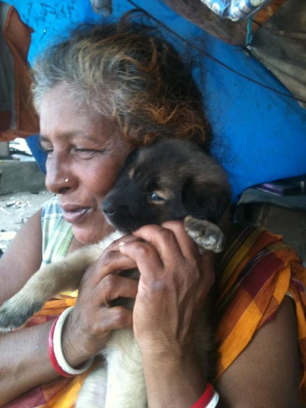 The Incredible Dog Rescuers And Animal Lovers Of India