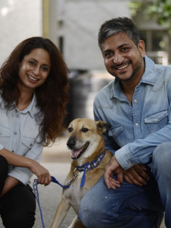 An App To Animal Lovers 'ResQ'
